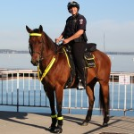 Members of the Mounted Patrol unit