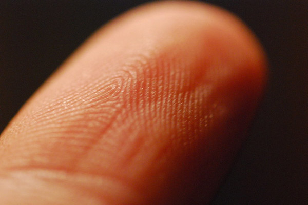 Close-up of a finger, the print pattern visible.